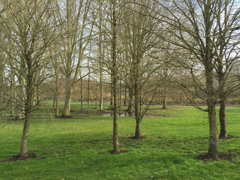 アミアンの公園