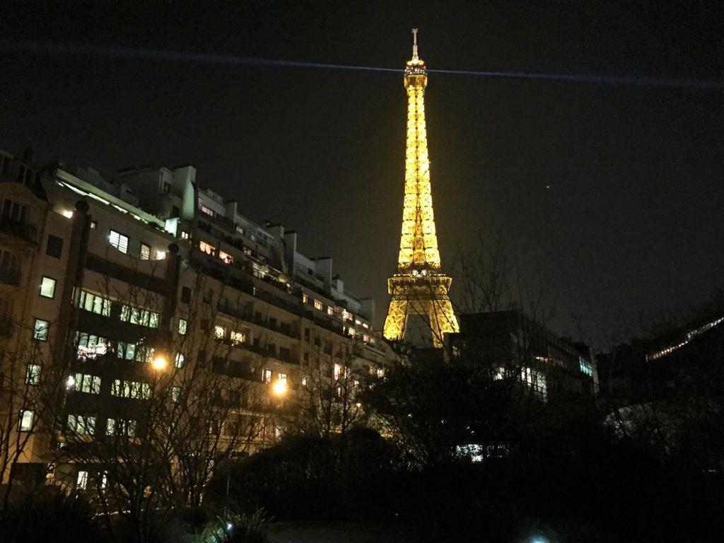 パリのケ・ブランリ美術館から見たエッフェル塔