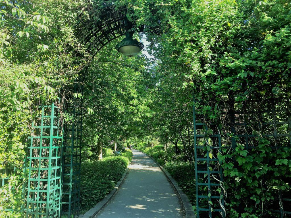 プロムナード・プランテの緑の景色