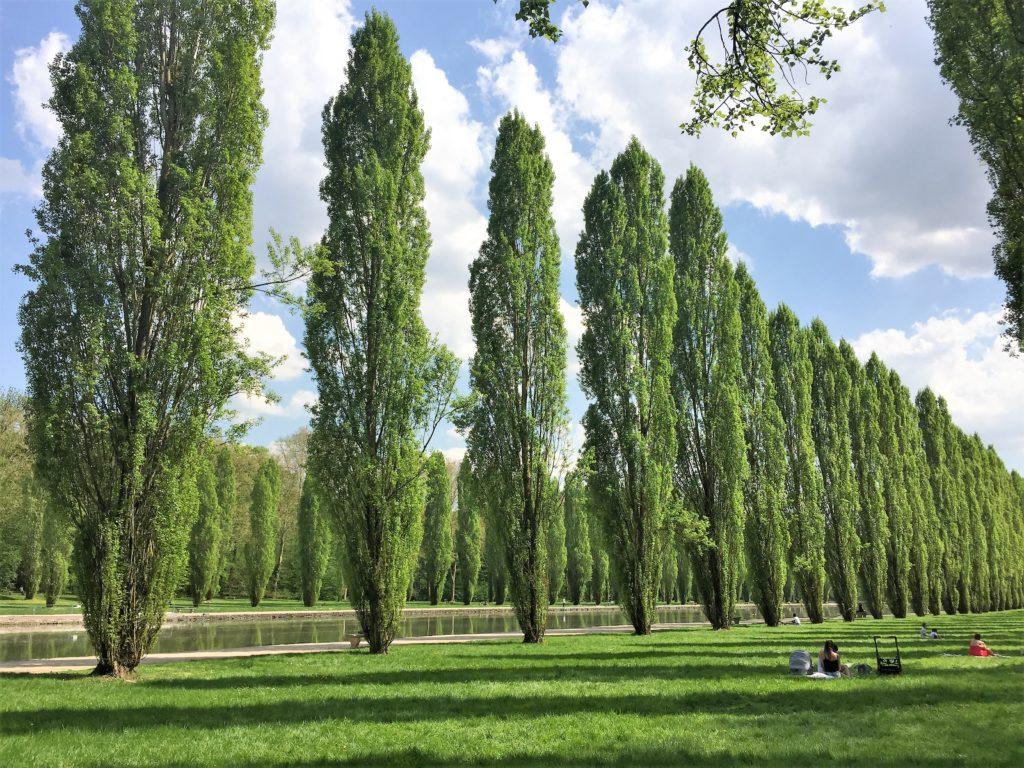 ソー公園の大運河の両岸にある芝生