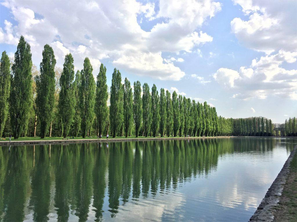 ソー公園の大運河に映る木々