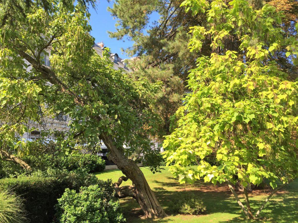 ウォルドルフ・アストリア・トリアノン・パレスの庭