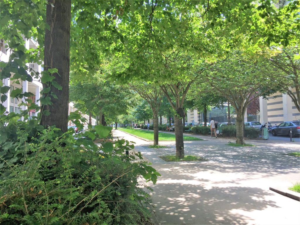 プロムナード・プランテの後半へと向かう公園