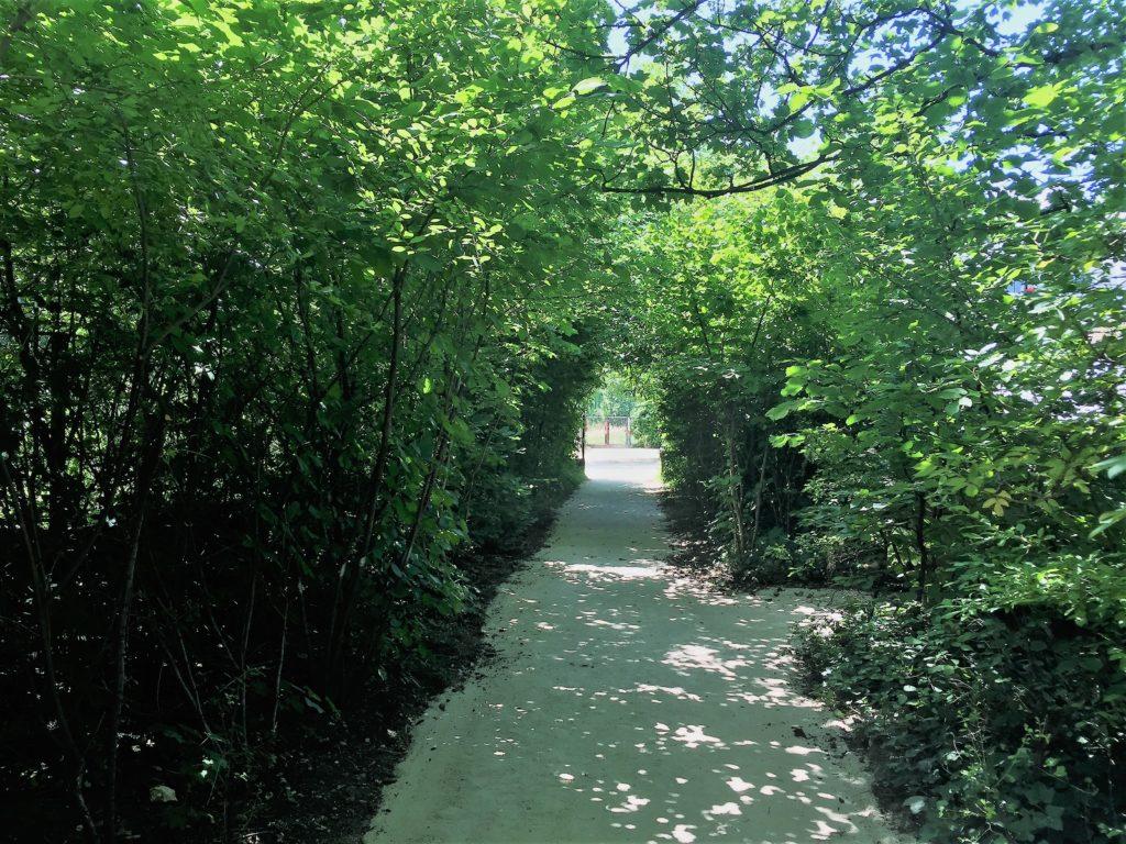 プロムナード・プランテの脇の小道
