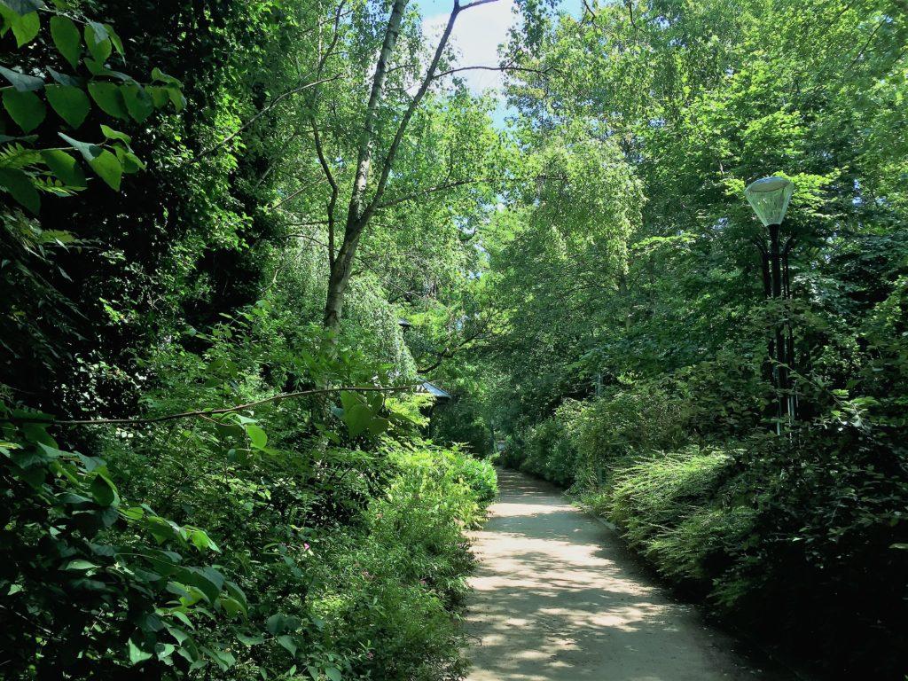 プロムナード・プランテのヴァンセンヌ近くの森