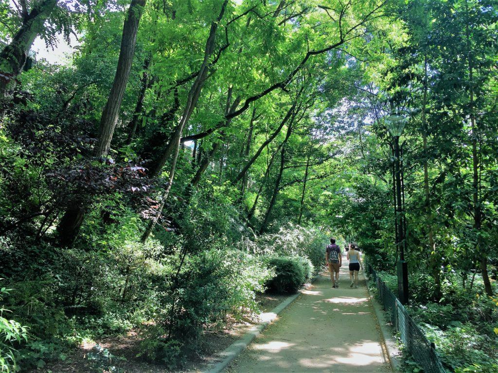 プロムナード・プランテの建物の谷間の散歩道