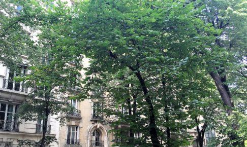 パリのアパルトマン