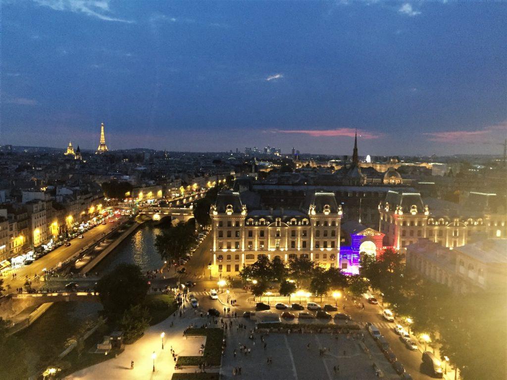 ノートルダム寺院の塔の上から見たパリのイルミネーション